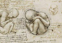 Η ζωή μέσα στη μήτρα: Η προγεννητική σχέση μητέρας-εμβρύου