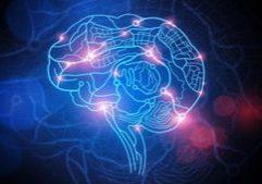 Craft-of-Rewiring-the-Brain